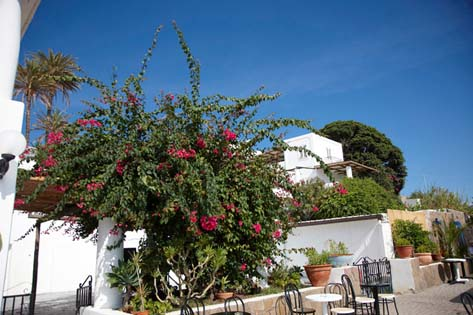 bb-casa-frank-stromboli-bed-and-breakfast-stromboli_LEV0637